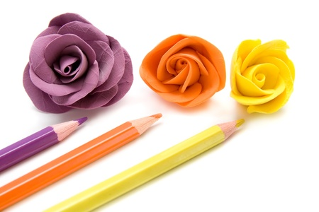 Bright decorative roses with color pencils on white background