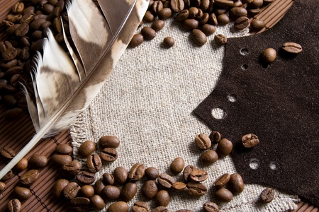 Coffee beans background with brown leather and bird feather