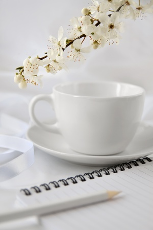 White cup with note-pad and blossoming spring brunch photo
