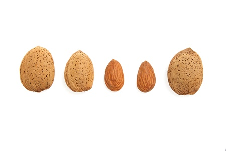 Five delicious fresh almonds on white background