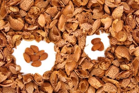 Almond kernels among  hulls -  symbolyzing useful informationidea among great number of useless stuff