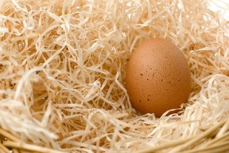 un oeuf en nid