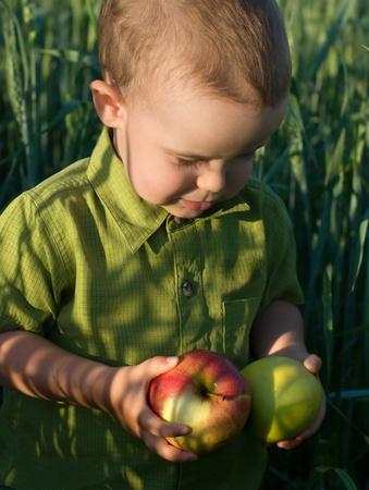 Portrait de petit gar�on avec des pommes