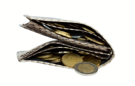 Fat wallet full of coins photo