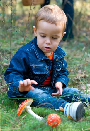 discoverer: Cute boy and mushrooms in a forest