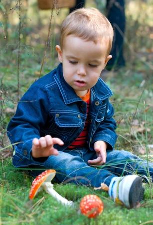 Cute boy et les champignons dans une for�t Banque d'images