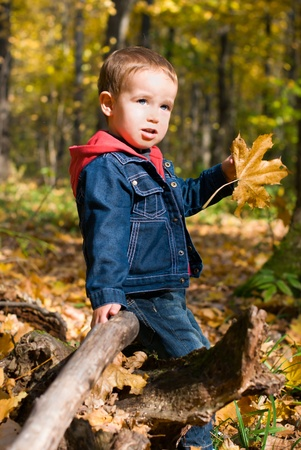 Cute boy and falling leaves in a forest photo
