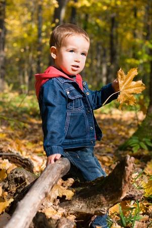 Cute boy et de la chute des feuilles dans une for�t