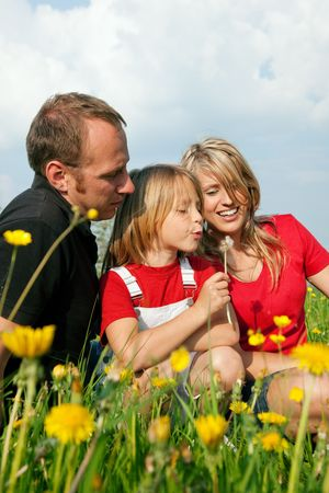 Young family in a meadow - the girl kid blowing dandelion seeds photo