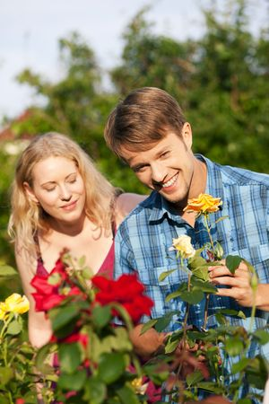 Couple doing garden work in the flower bed at beautifully sunny day photo