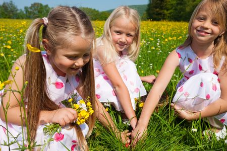 Children on a beautiful sunlit meadow in spring on an Easter egg hunt having just found a nest photo