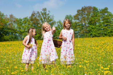 Children on a beautiful sunlit meadow in spring with a basket on an Easter egg hunt photo