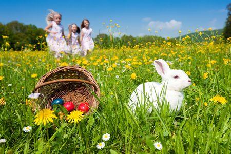 pascuas navide�as: Conejito de Pascua en un prado hermoso de primavera con el diente de Le�n en frente de una canasta con huevos de Pascua; ni�os en segundo plano en una caza de huevo