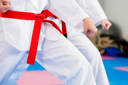 martial arts woman: People in a gym in martial arts training exercising Taekwondo