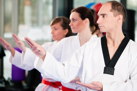 arte marcial: Personas en un gimnasio de artes marciales formaci�n ejercicio de Taekwondo, el entrenador tiene un cintur�n negro.