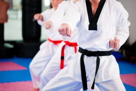 black belt: People in a gym in martial arts training exercising Taekwondo, the trainer has a black belt
