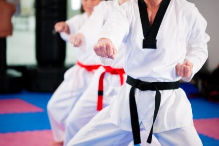 arte marcial: Personas en un gimnasio de artes marciales formaci�n ejercicio de Taekwondo, el entrenador tiene un cintur�n negro.   Foto de archivo