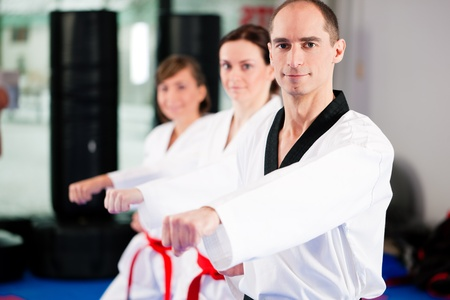 martial arts woman: People in a gym in martial arts training exercising Taekwondo, the trainer has a black belt