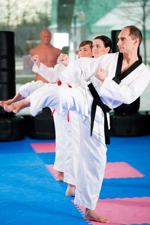 black belt: People in a gym in martial arts training exercising Taekwondo, the trainer has a black belt Stock Photo