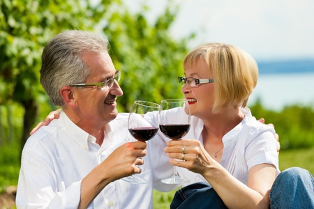 Happy mature couple - senior people (man and woman) already retired - drinking wine at lake in summer Stock Photo - 10021068