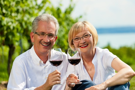 Happy mature couple - senior people (man and woman) already retired - drinking wine at lake in summer Stock Photo - 10021044