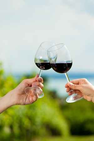 clinking: Happy couple - man and woman, only hands to be seen - drinking wine at lake in summer