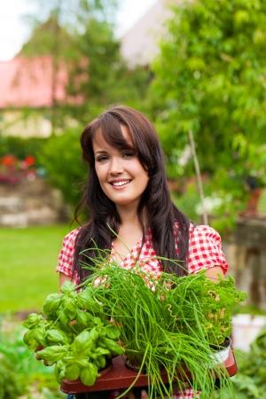 basilic: Jardinage en �t� - femme heureuse avec diff�rents types d'herbes fra�ches Banque d'images