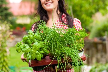 Garten im Sommer - happy Woman mit anderen Art von frischen Kräutern