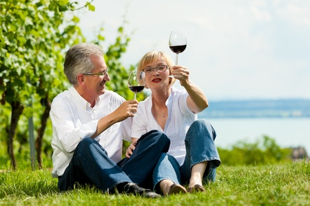 Happy mature couple - senior people (man and woman) already retired - drinking wine at lake in summer Imagens