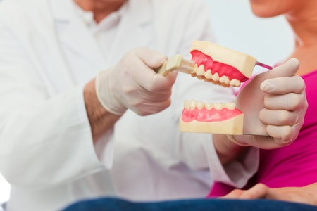 Dentist explaining teeth brushing to patient with an artificial set of teeth  photo