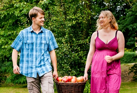 Couple (man and woman) carrying a basket with freshly harvested apples photo