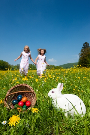 easter bunny: Children on an Easter Egg hunt on a meadow in spring, in the foreground the Easter bunny is waiting Stock Photo