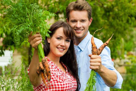 Gardening in summer - happy couple harvesting carrots and having lots of fun photo