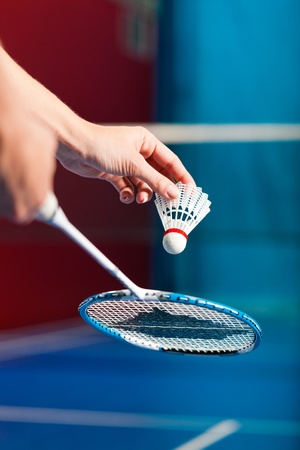 shuttlecock: Woman playing Badminton and doing sport in gym, only serve to be seen Stock Photo