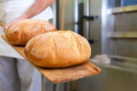 Male baker baking fresh bread in the bakehouse Stock Photo - 12443413