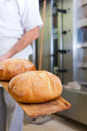 M�nnlich B�cker backen frisches Brot in der Backstube Lizenzfreie Bilder
