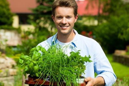 Gartenarbeit im Sommer - glücklicher Mann mit verschiedenen Arten von frischen Kräutern