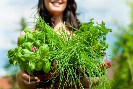 cebollines: Jardinería en verano - mujer feliz con diferentes tipos de hierbas frescas Foto de archivo