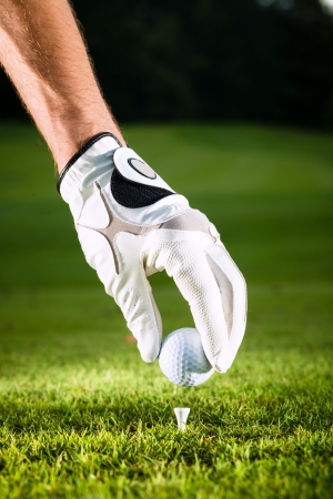 golf glove: Hand hold golf ball with tee on course, close-up