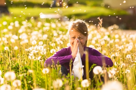 Girl sitting in a meadow with dandelions and has hay fever or allergy Stock Photo