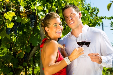 Woman and man standing at vineyard and drinking wine at sunshine and smiling photo