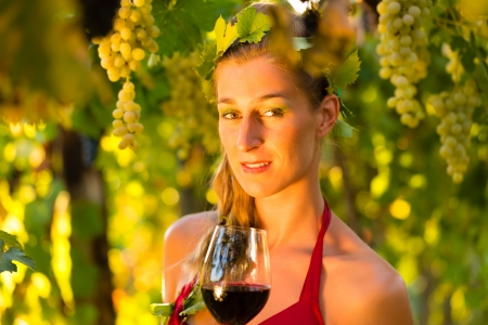 Woman with glass of wine in the vineyard with sunshine, she is the wine queen photo
