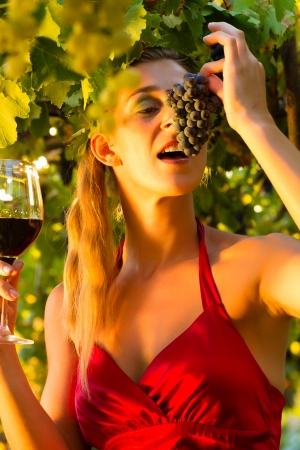 wine grower: Woman with glass of wine in the vineyard with sunshine, she is the wine queen