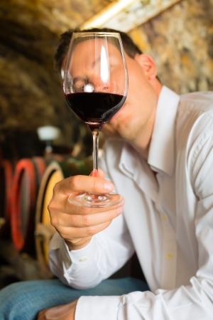 wine testing: Man testing wine in background wine barrels in wine cellar
