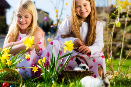 easter eggs: Children on an Easter Egg hunt on a meadow in spring, a living Easter Bunny is sitting in the Easter basket