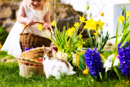 brown eggs: Little girl on an Easter Egg hunt on a meadow in spring, in the foreground a living Easter bunny is waiting Stock Photo
