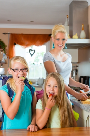 Family - mother making breakfast for her children in the morning and a snack for school Stock Photo - 17620228