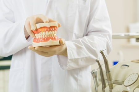false teeth: Dentists in his surgery holds a denture, in the background are tools for a dentist Stock Photo