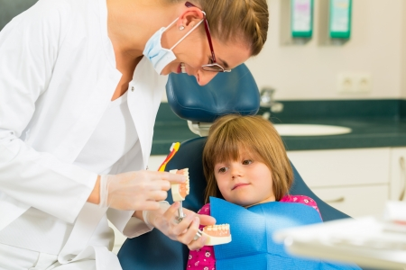 Dentist in surgery holds denture and explains a child patient with a toothbrush Stock Photo - 17657330
