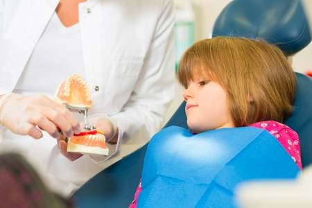 Dentist in surgery holds denture and explains a child patient with a toothbrush Stock Photo - 17657346